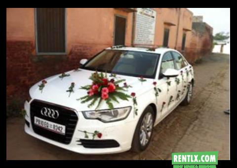 Luxury cars on rent - Kapurthala