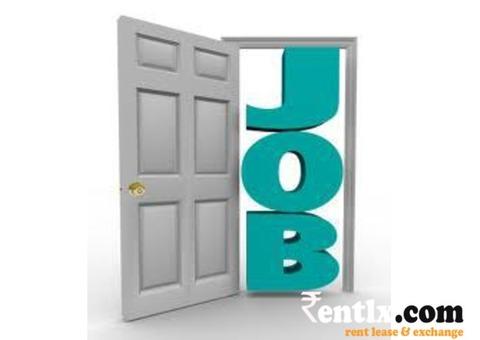 Jobs for Fresher Technical Support in Mansarovar Jaipur