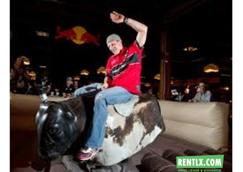 Mechanical Bull ride for Rent