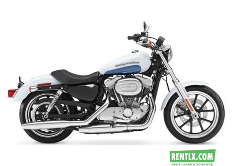 Harley Davidson SuperLow Bike on Rent