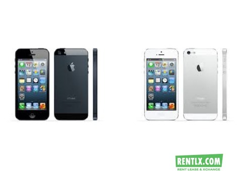 Apple i-Phones On Rent