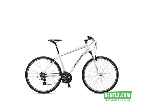 Schwinn- Hybrid Cycle on Rent in Chennai