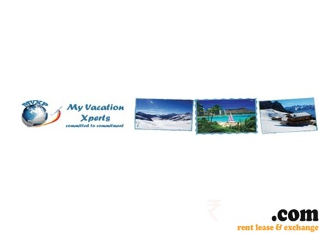 AC Deluxe Buses on Rent and Van & Tempo Traveller on Rent in Jaipur