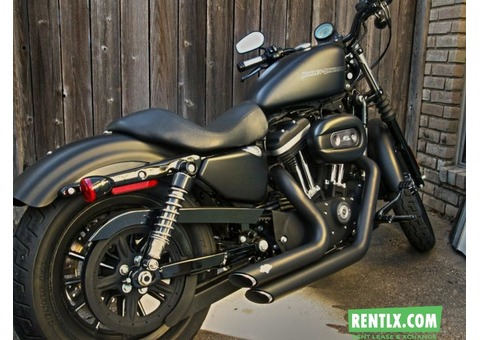Harley Davidson Iron 883 on rent in Delhi/NCR