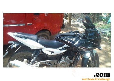 New Bajaj Pulsar 220cc Bike on rent in Vadakara