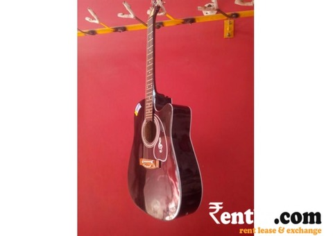 Guiter  on  Rent in Mumbai