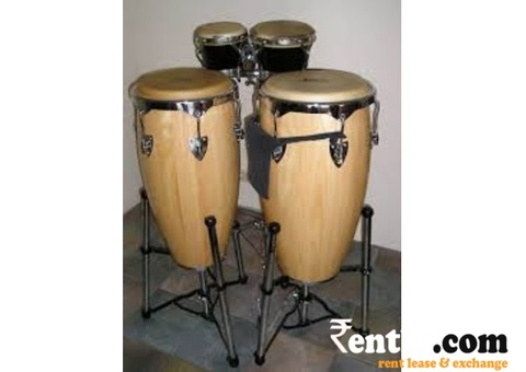 Congo Drums on Rent in Pune