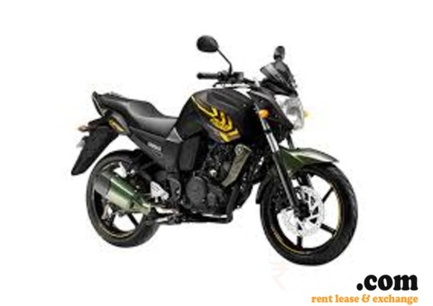 Fz S Green on Rent